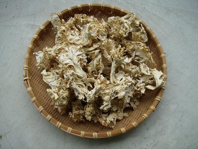 ハナビラ茸(乾燥)