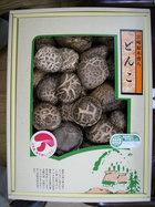乾椎茸 どんこ 送料無料!